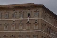 papa-francesco---piazza-san-pietro-marzo-2013_13911139514_o