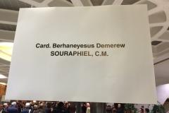 incontro-con-il-card-berhaneyesus-demerew-souraphiel-cm_15921311863_o