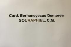incontro-con-il-card-berhaneyesus-demerew-souraphiel-cm_16540439792_o