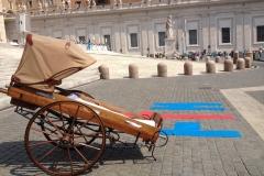 misericordie-e-fratres-incontrano-papa-francesco_14448750933_o