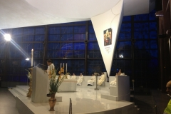 pellegrinaggio-2014-delle-misericordie-al-santuario-della-madonna-del-divino-amore_14171848907_o