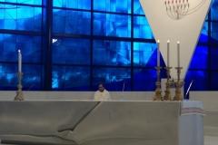 pellegrinaggio-2014-delle-misericordie-al-santuario-della-madonna-del-divino-amore_14356797922_o