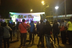san-romano-in-festa-2014_14913446403_o